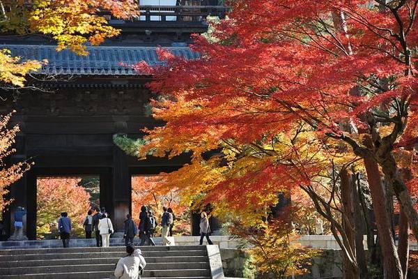 luksuz-putovanje-odmor-destinacija-japan-kjoto_04