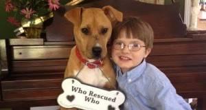Едно семејство посвоило повредено куче за нивниот син со аутизам, но не очекувале дека нивниот живот тотално ќе се промени!