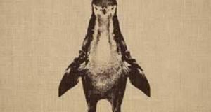 Што гледате на оваа слика? Пингвин? Погледнете подобро, можеби ќе се изненадите!
