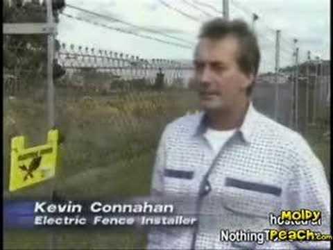 Новинар за време на емисија во живо, со раце фатил електрична ограда! Нема да верувате…