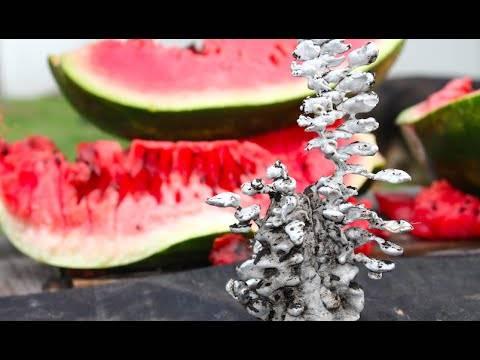 Погледнете што се случува кога ќе ставите течен алуминиум во лубеница