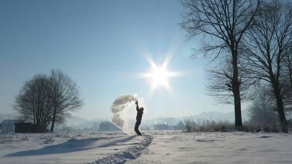 Вака Босанец се забавува на -30 степени
