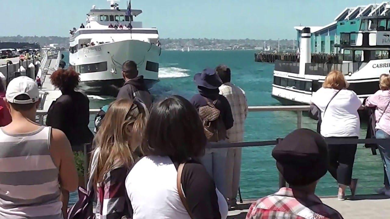 Насобраните туристи гледале голем брод како впловува во пристаниште, а потоа следело ОВА!