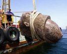 Погледнете што пронашле научниците на дното од морето