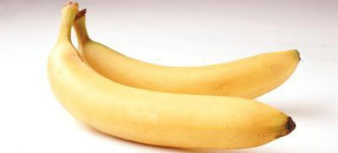 Што прават 2 банани на ден за вашиот организам