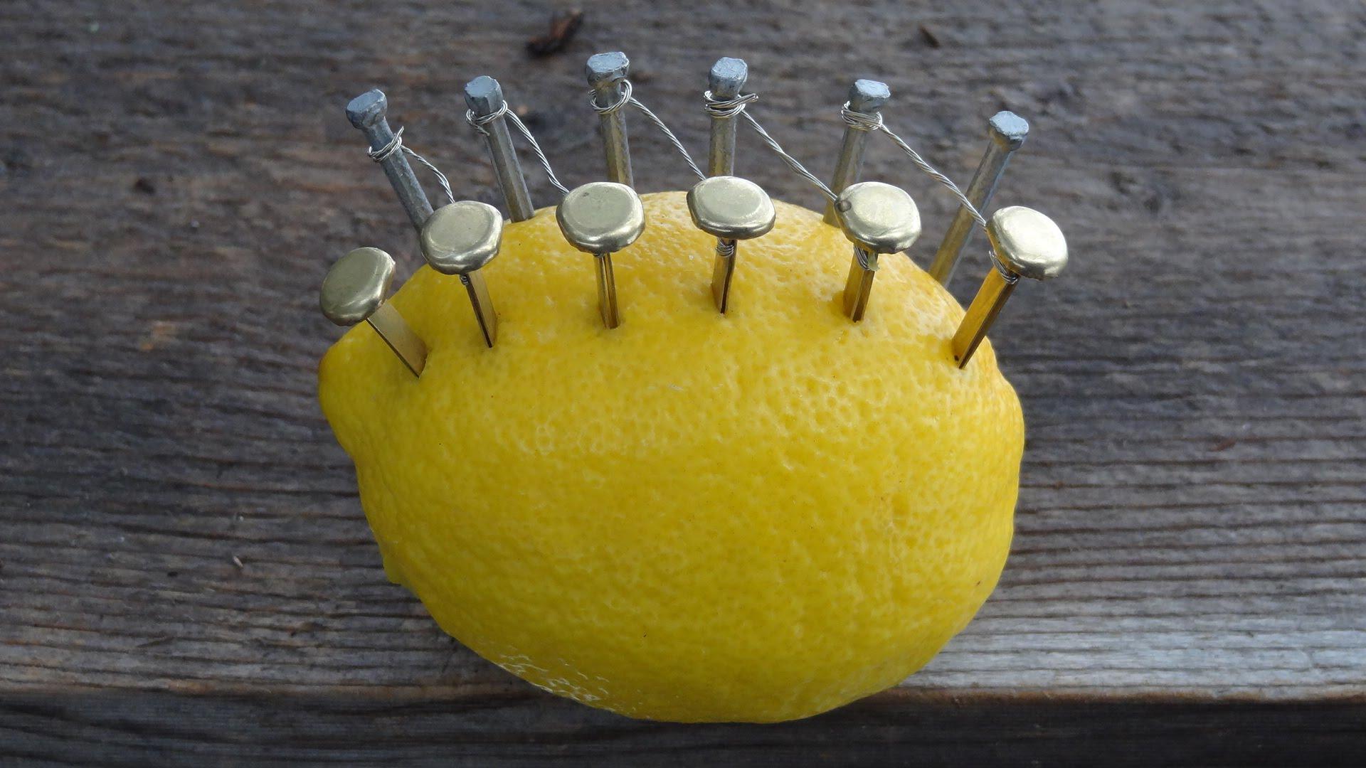 stavil-12-klinci-vo-limon-koga-k.jpg