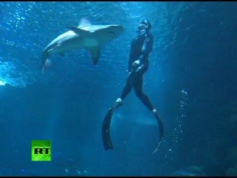 Нуркал без заштита со 25 ајкули…