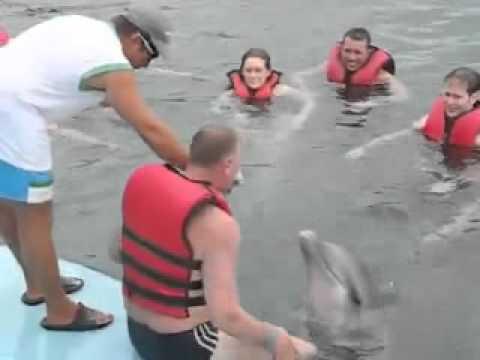 Се надеваше на бакнеж од делфинот, а доби многу повеќе!