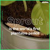 Моливот што се претвора во растение