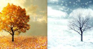 Сезоните во животот