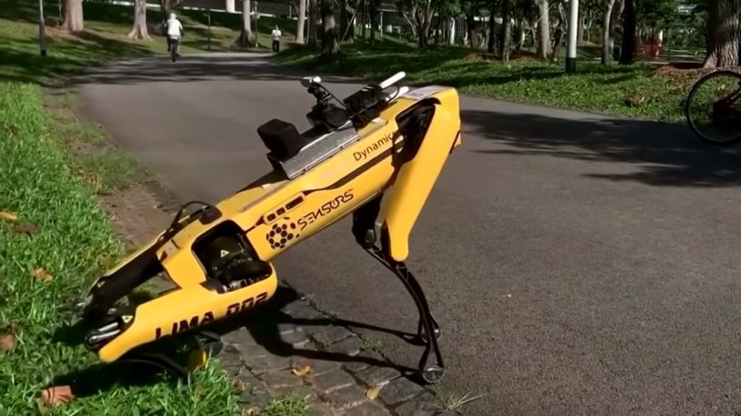 robot-kuce