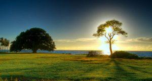Пет фасцинантни природни феномени, коишто вреди да се посетат