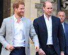 Дали новата книга ќе ја открие вистинската вистина за конфликтот помеѓу Вилијам и Хари?