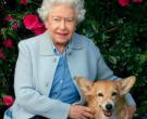 Излегоа слики од дворецот, нема да верувате што прави британската кралица на 94 години!