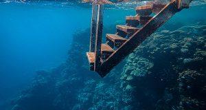 Дали подводните патувања можат да станат иднина на туризмот?