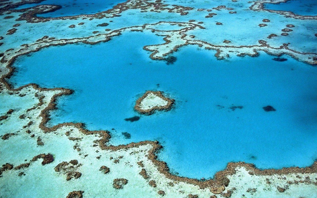 koralni-greben