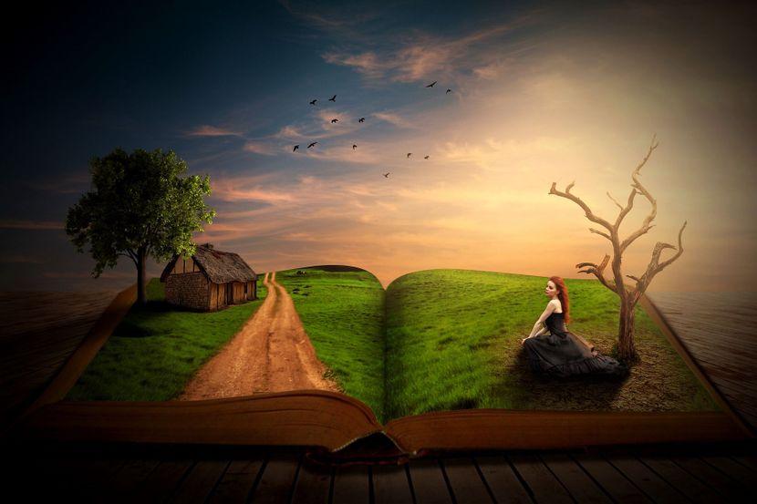 book-41396481920-830x0