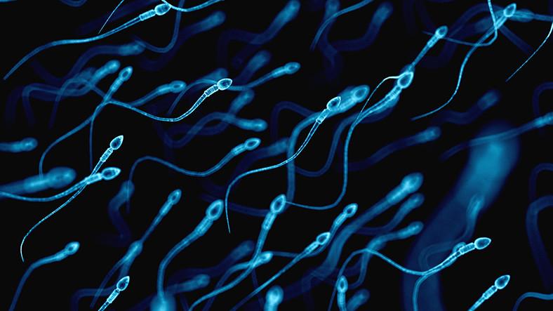 kanser-tedavisinde-sperm-kullanilabilir-1513424854