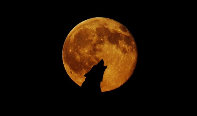 306079_full-moon-948567-1920_f