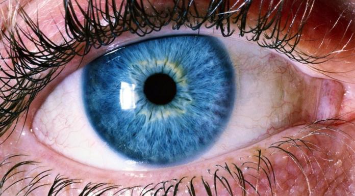 human-eye-696x385
