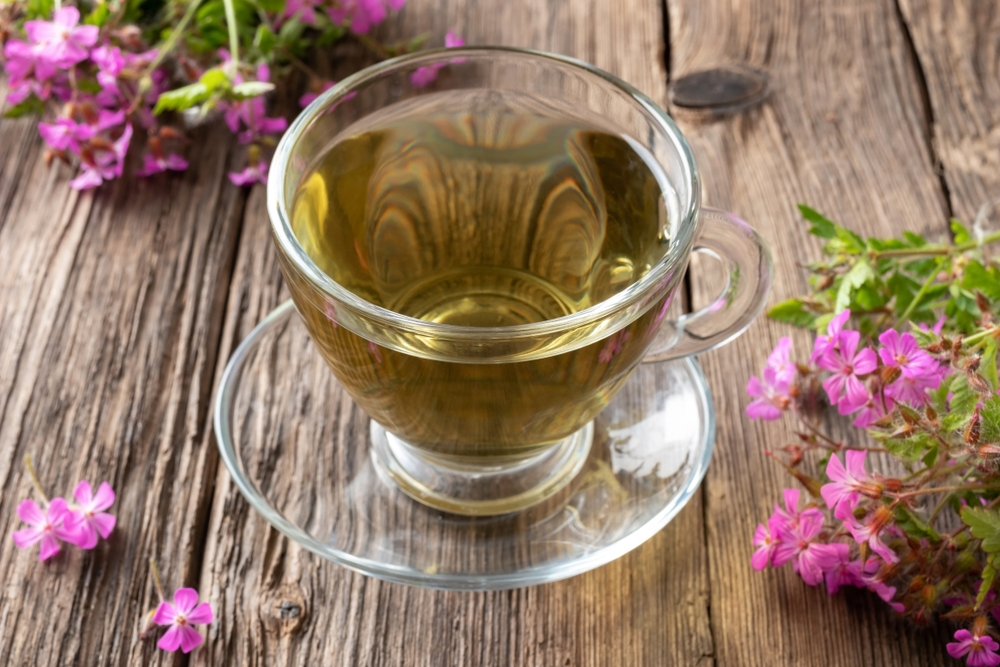A,Cup,Of,Herbal,Tea,With,Fresh,Blooming,Herb-robert,Plant