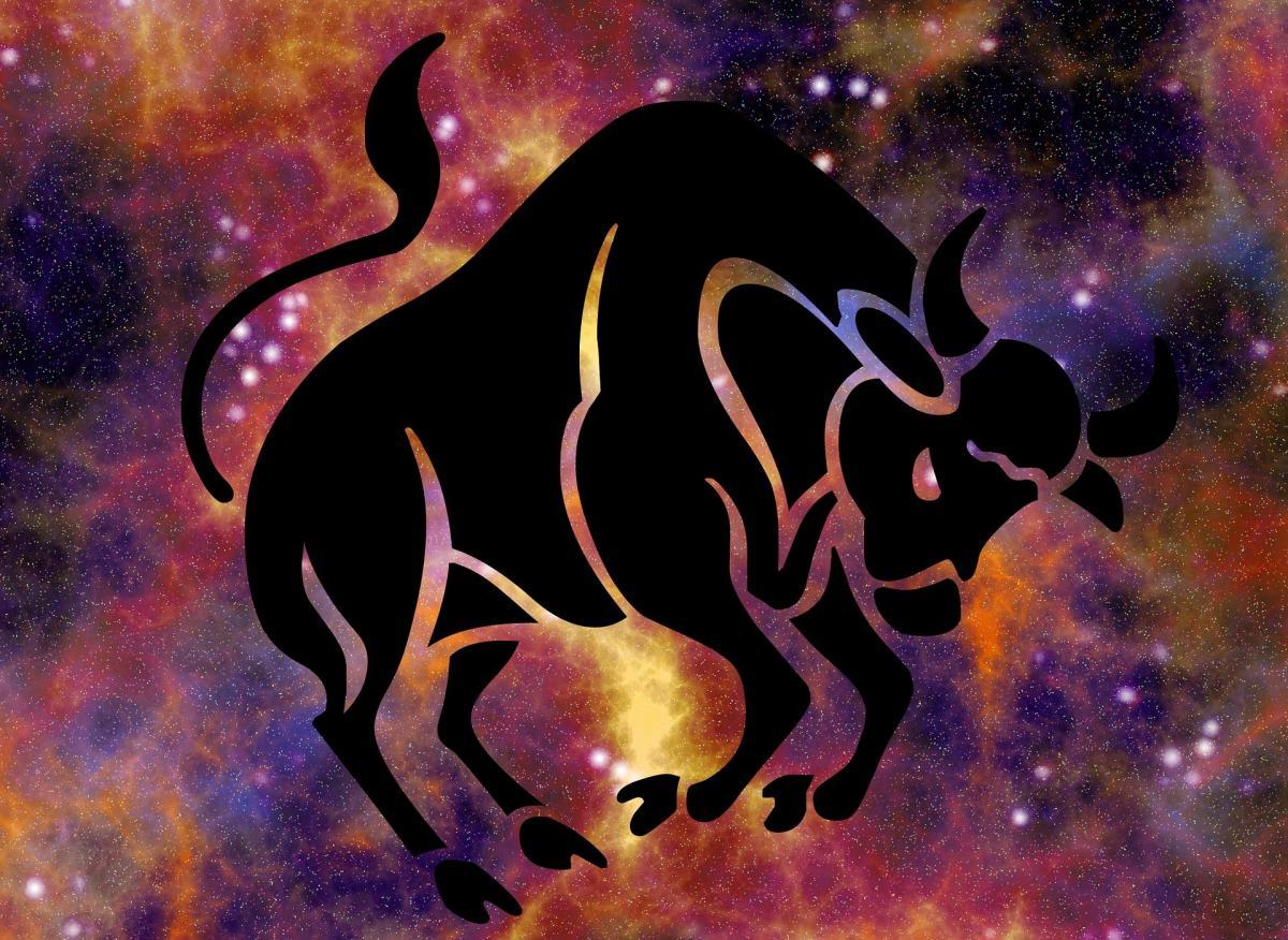 zodiac-taurus-bull