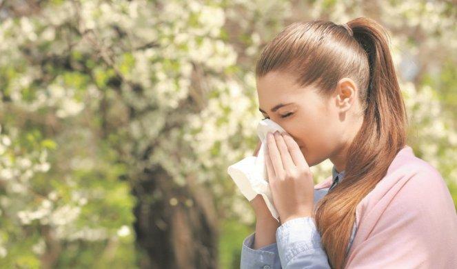 428641_kijavica-alergija_f