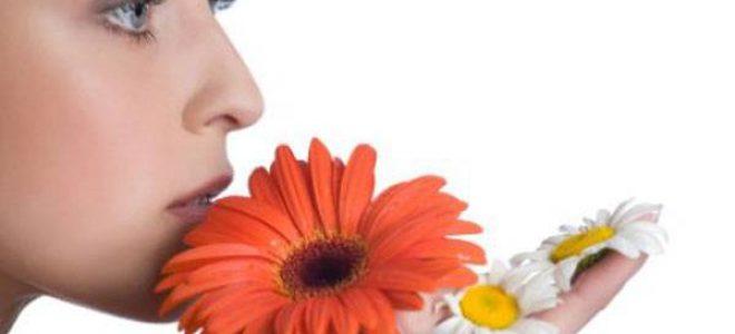 Сите причини за осип: Инфекции, стрес, пот и алергија на